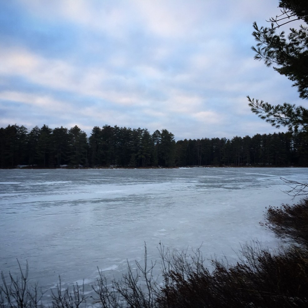 view of lake from yurt 49 mew lake