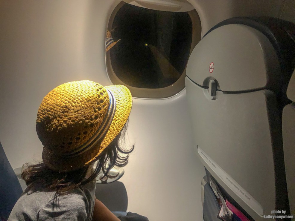 Flying With Kids? What you need to know! #flyingwithkids #airplanerides #travelwithkids #kidstravel #willisitwithmykids #seatedwithkids #flyingfromcanada #flightdelay