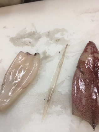 Prepping Baby squid
