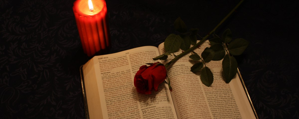 bible and rose poetry