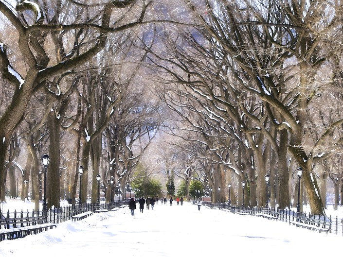 New York City, NYC, New York, Central Park New York City, Poet's Walk Central Park