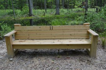 Bench on the trail