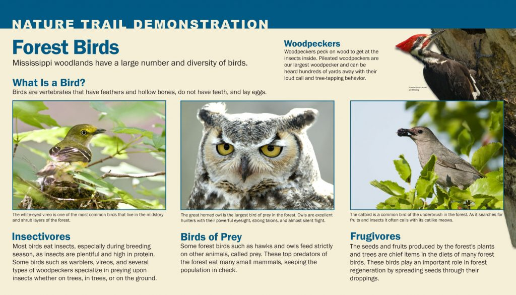 Nature Trail Demonstration Signs - Kathy Jacobs Design & Marketing