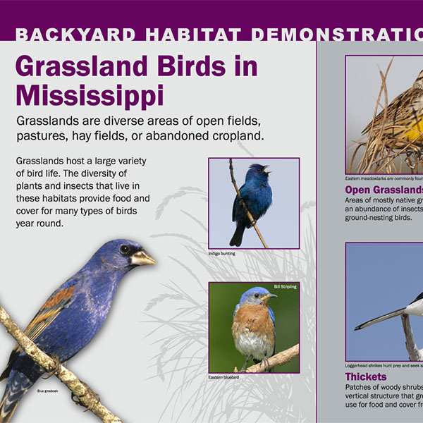 Backyard Habitat Demonstration Signs