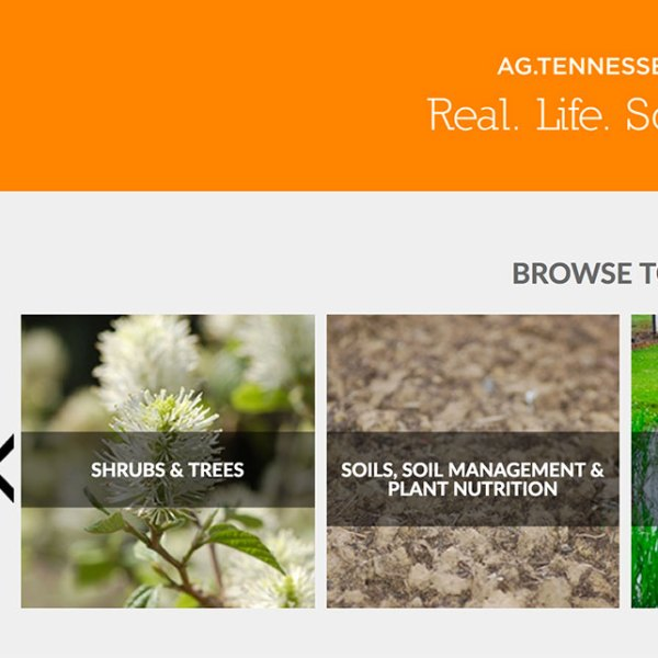 Plant Sciences Horticulture Website