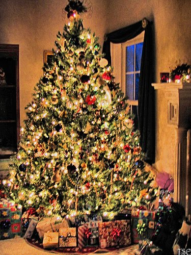 Xmas Christmas tree Lights