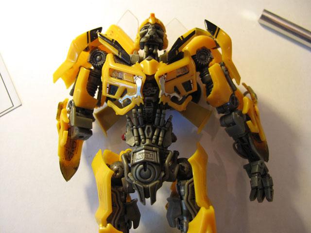 Bumblebee breastplate