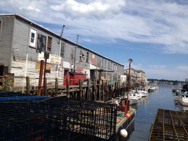 Fish harbour market