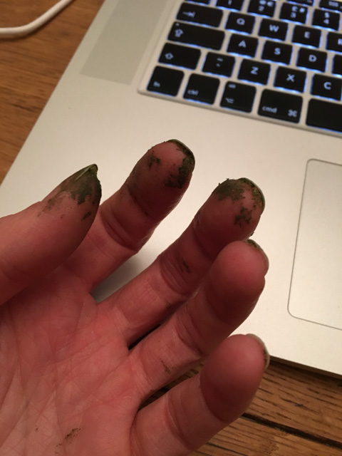 Dirty fingers