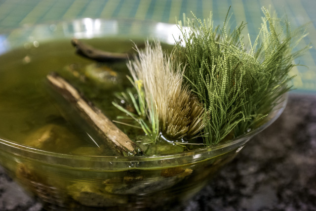 Reeds in resin