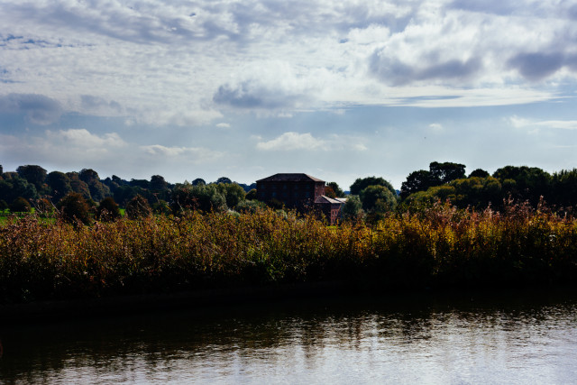 Another canal with bulrushes