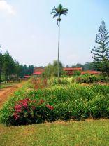 The monastery gardens