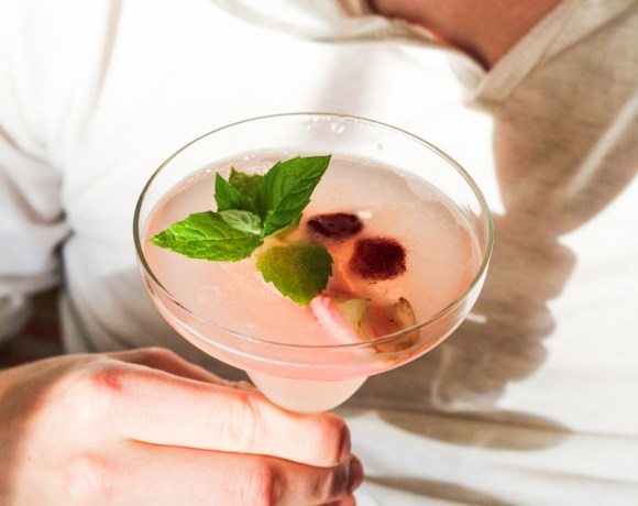 Ingredient of the Week: Rhubarb // Rhubarb-Prosecco Spritzer