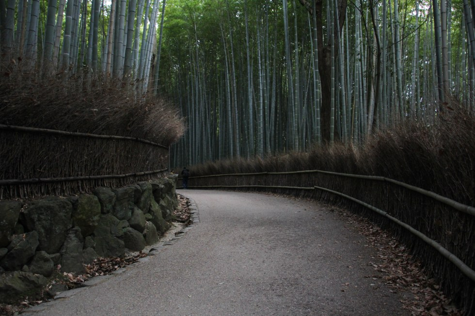 Arashiyama Bamboo Grove, Kyoto {Katie at the Kitchen Door} #Japan #travelogue