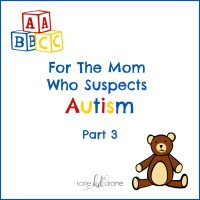 For The Mom Who Suspects Autism (Part 3)