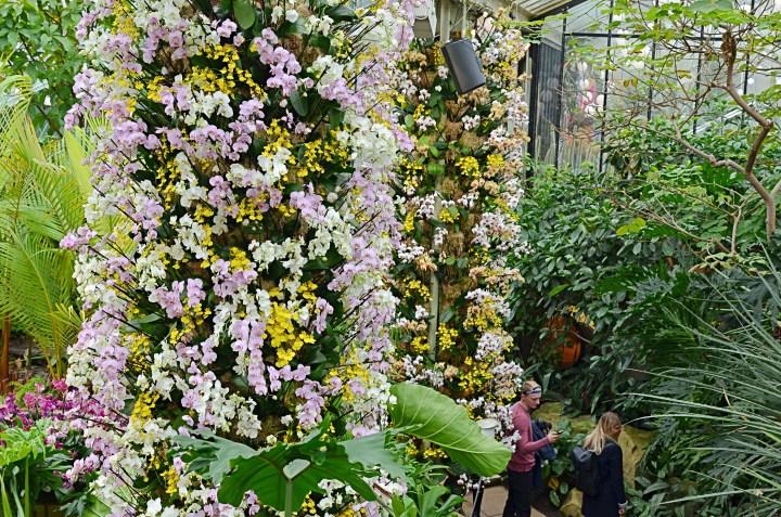 Kew 8
