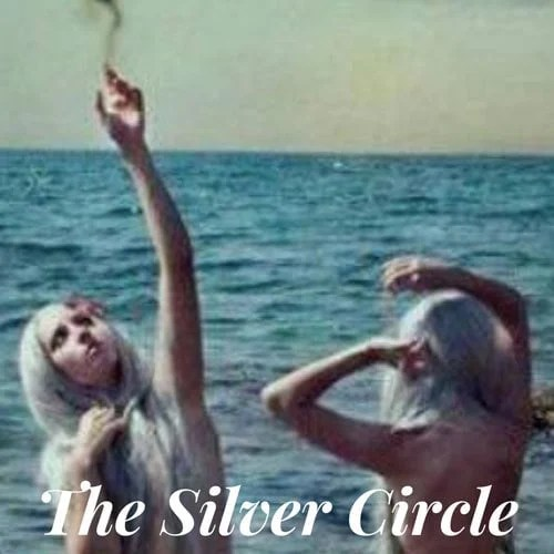 image of the Silver Circle facebook gray hair support groups
