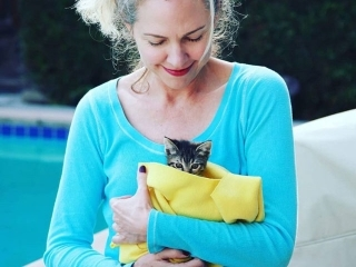 image of pretty woman gray hair blue shirt holding kitten