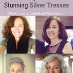 image silver hair transition