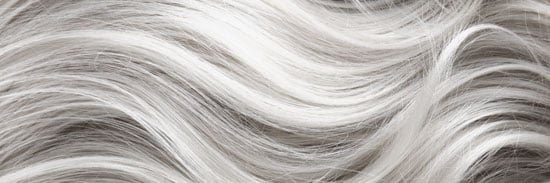 image of gray hair texture