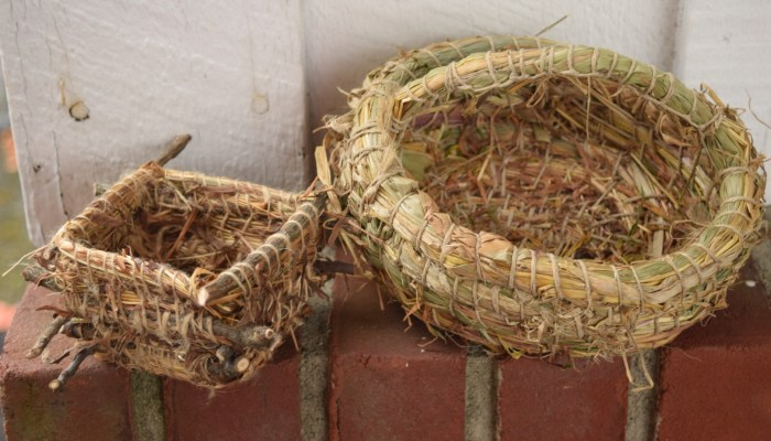 Backyard Basketry: Coiling With Cattails, Iris Leaves, And Leaves