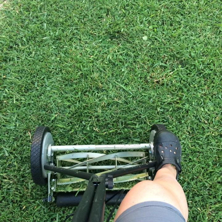 I even had a lawn mower