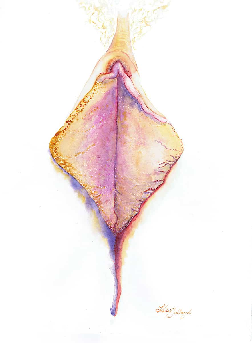 Open vagina drawing in bright coloured watercolour