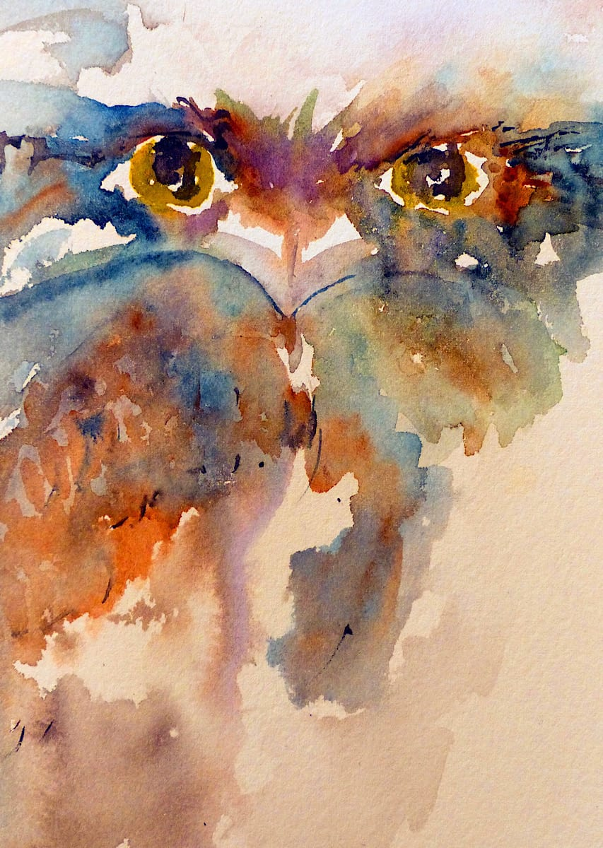 Tawny frogmouth loose up close colourful watercolour painting by Katie Lloyd
