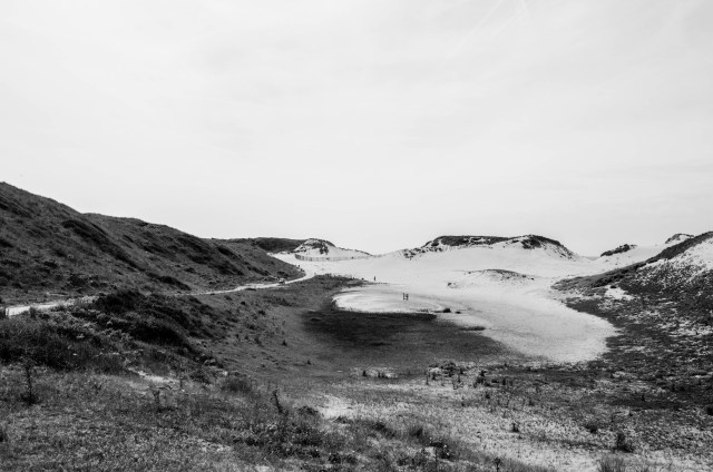 spectacular view of the dunes in Nationaal Park Zuid Kennemerland near Zandvoort in the Netherlands