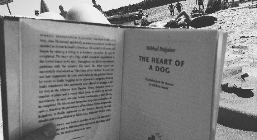 Heart of a Dog by Mikhail Bulgakov is a satirical allegory of the Russian Revolution, telling the absurd story of a dog implanted with the testes and pituitary gland of a recently dead man