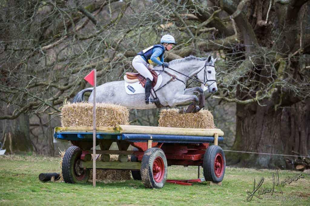 equine portrait photographer aldon horse trials