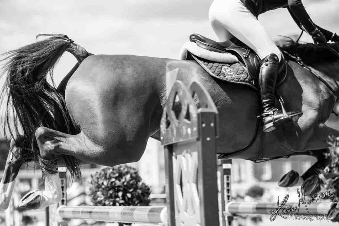 equine horse photographer wiltshire hampshire devon somerset london gct longines champions tour