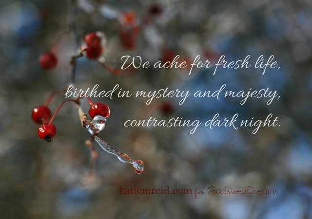 We ache for fresh life quote by Katie M. Reid Photography