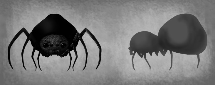 spider3wip