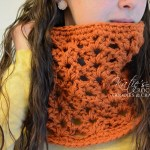 Lacey Shell Chunky Crochet Cowl Pattern