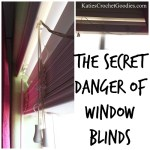 The Secret Danger of Window Blinds