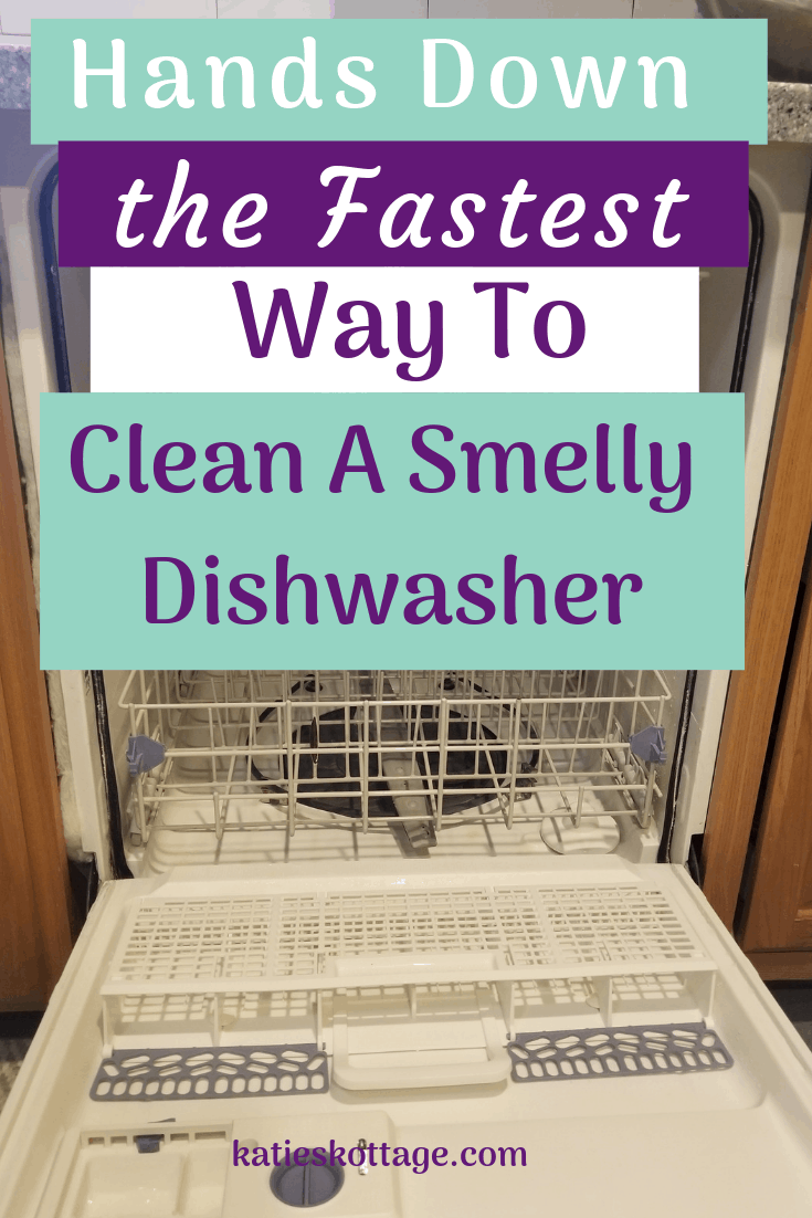 Deep clean the dishwasher with vinegar and baking soda or bleach. Clean the dishwasher filter and many more tips. #cleaningtips #cleaning #cleaninghacks #cleankitchen #kitchen #dishwasher