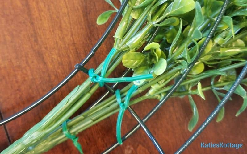 make your own boxwood wreath