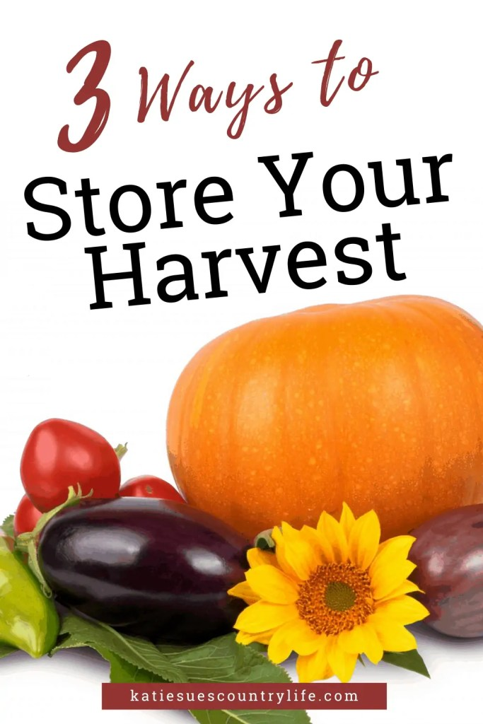 3 Ways to Store Your Harvest