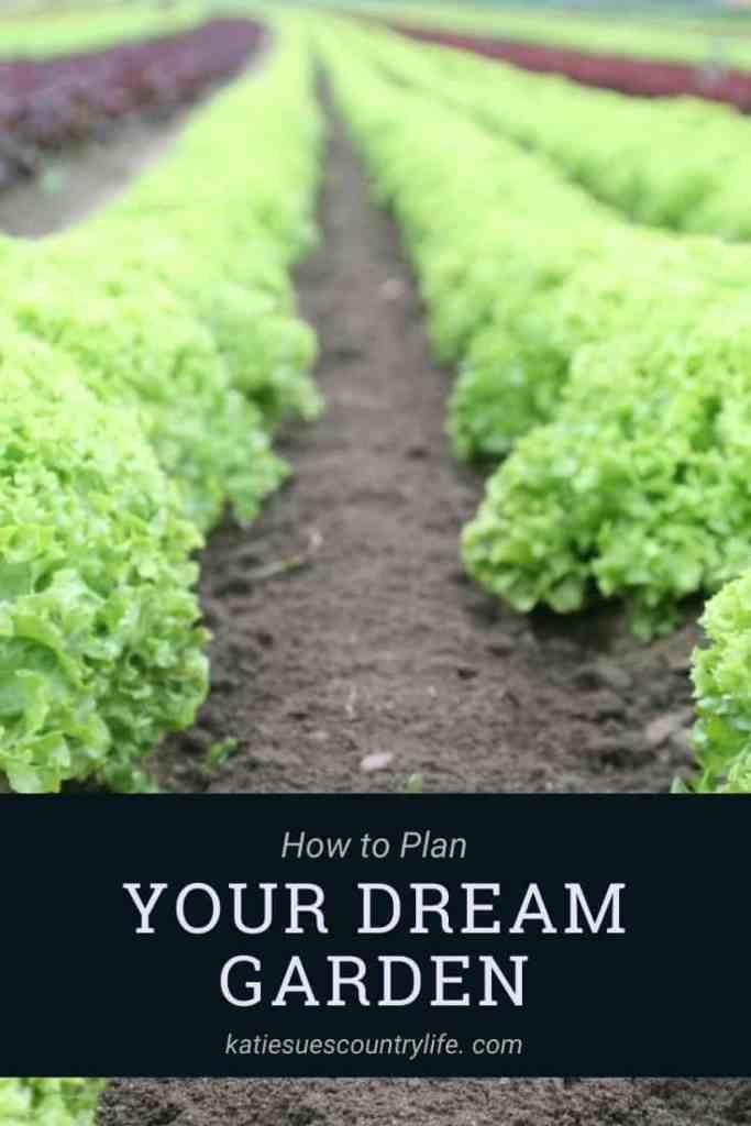 Planning Dream Garden