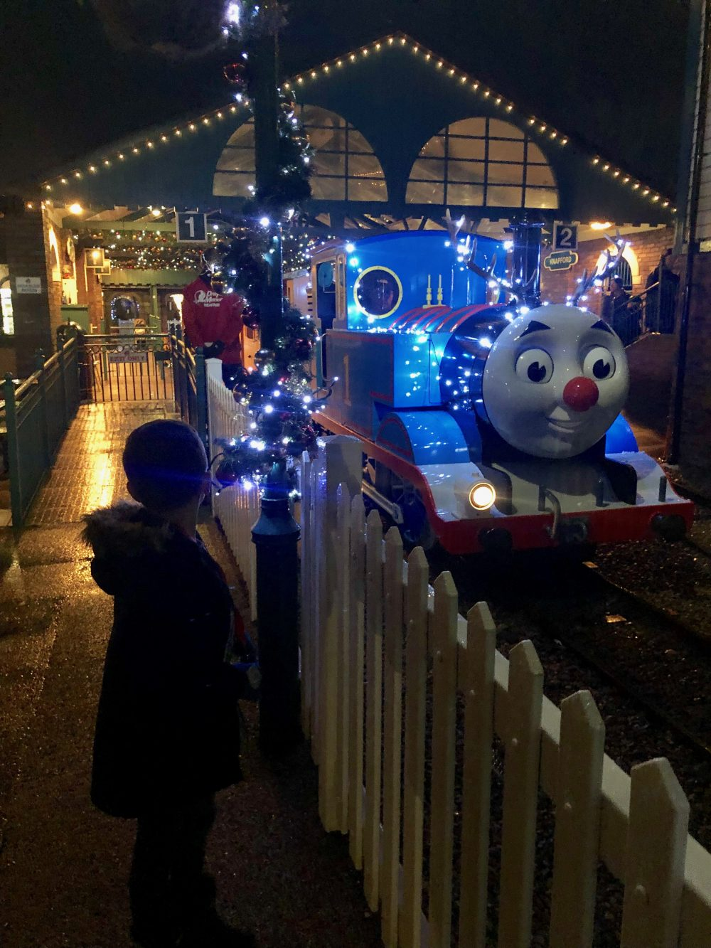 Thomas Land Pic