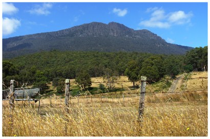 This was the first view we stopped at to take photos - an event that occurred roughly five minutes into our roadtrip. The distances aren't great in Tasmania but it still takes a long time to get anywhere because you need to keep stopping to admire the scenery.