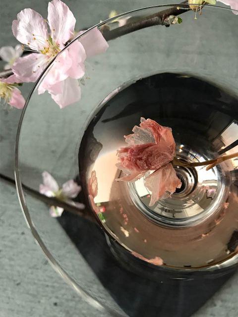 Sakura Martina – Frühling im Glas