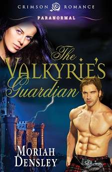 The Valkyrie's Guardian