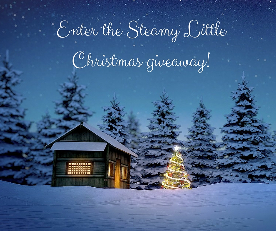 Enter the Steamy Little Christmas giveaway