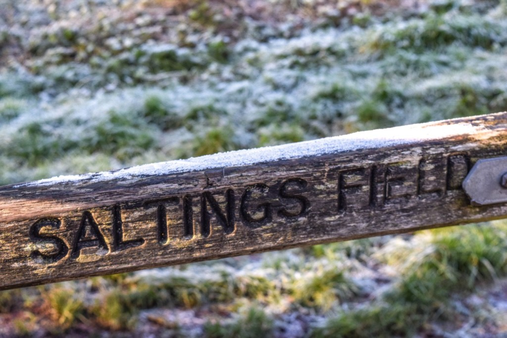 Frosty December Morning - Kat Naish Photography