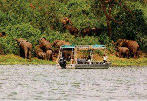 Uganda Cultural Wildlife