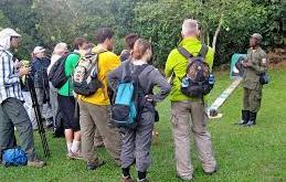 Gorilla Treking Gorilla Treking - gorilla treking by katona tours - Gorilla Treking