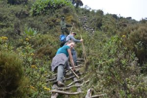 Mount Sabinyo Volcano Hike