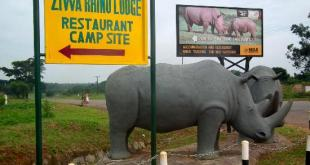 Ziwa Rhino Sanctuary Ziwa Rhino Sanctuary - ziwa rhino sanctuary by katona - Rhino Tracking in Ziwa Rhino Sanctuary